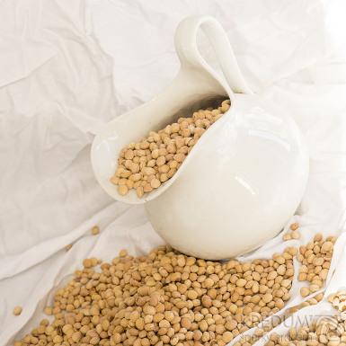 Třešňové pecky - 10000 g (10 kg)